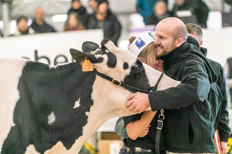 concours-habsheim-holstein-2018_51.jpg