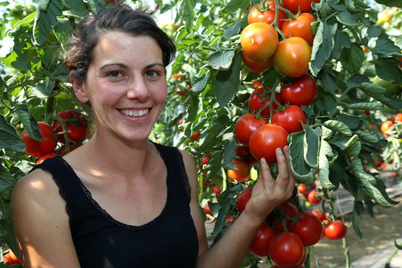 Libre cueillette légumes - 02 - Devivier Laure.jpg