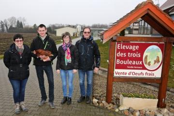 Trois Bouleaux - 01.jpg
