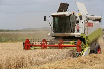 Moisson blé - 02.jpg