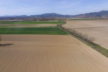 Drone semis betteraves 30031702.jpg