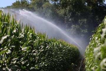 CP Irrigation - 08.jpg