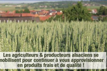 Agriculteurs d'Alsace.png